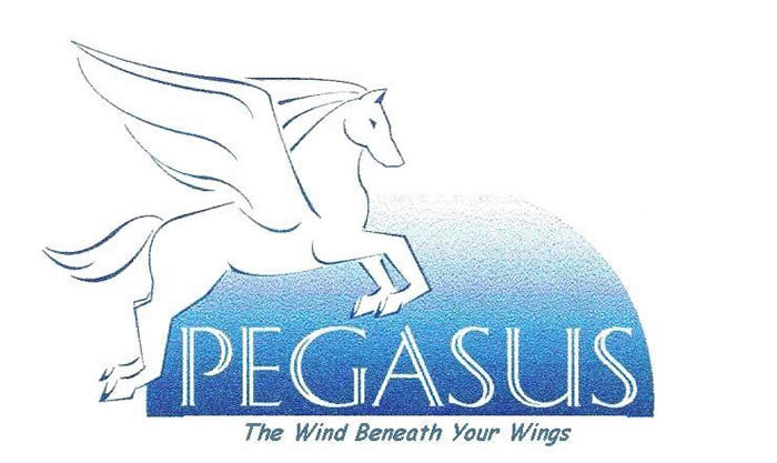 [Advocacy by Pegasus LLC · The Wind Beneath Your Wings ]